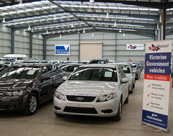 melbourne-facilities-auction-floor